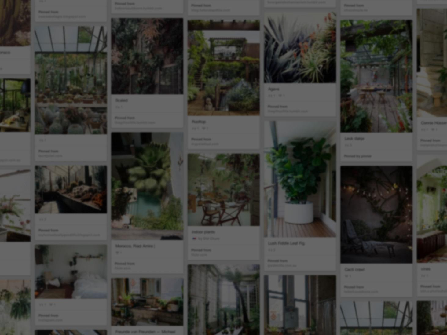 He used pinterest to start his rooftop oasis welcome to pinterest the
